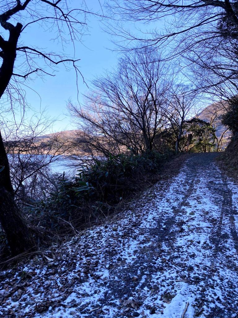 芦ノ湖西側トレイル1